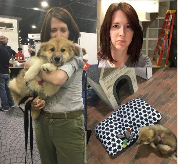 Rescue puppy and CG Design's Kim-Seiger